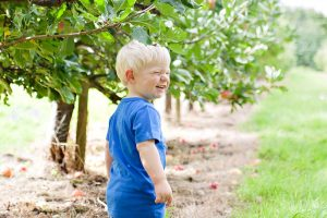 little boy in apple trees, outdoor kids photographer hawarden