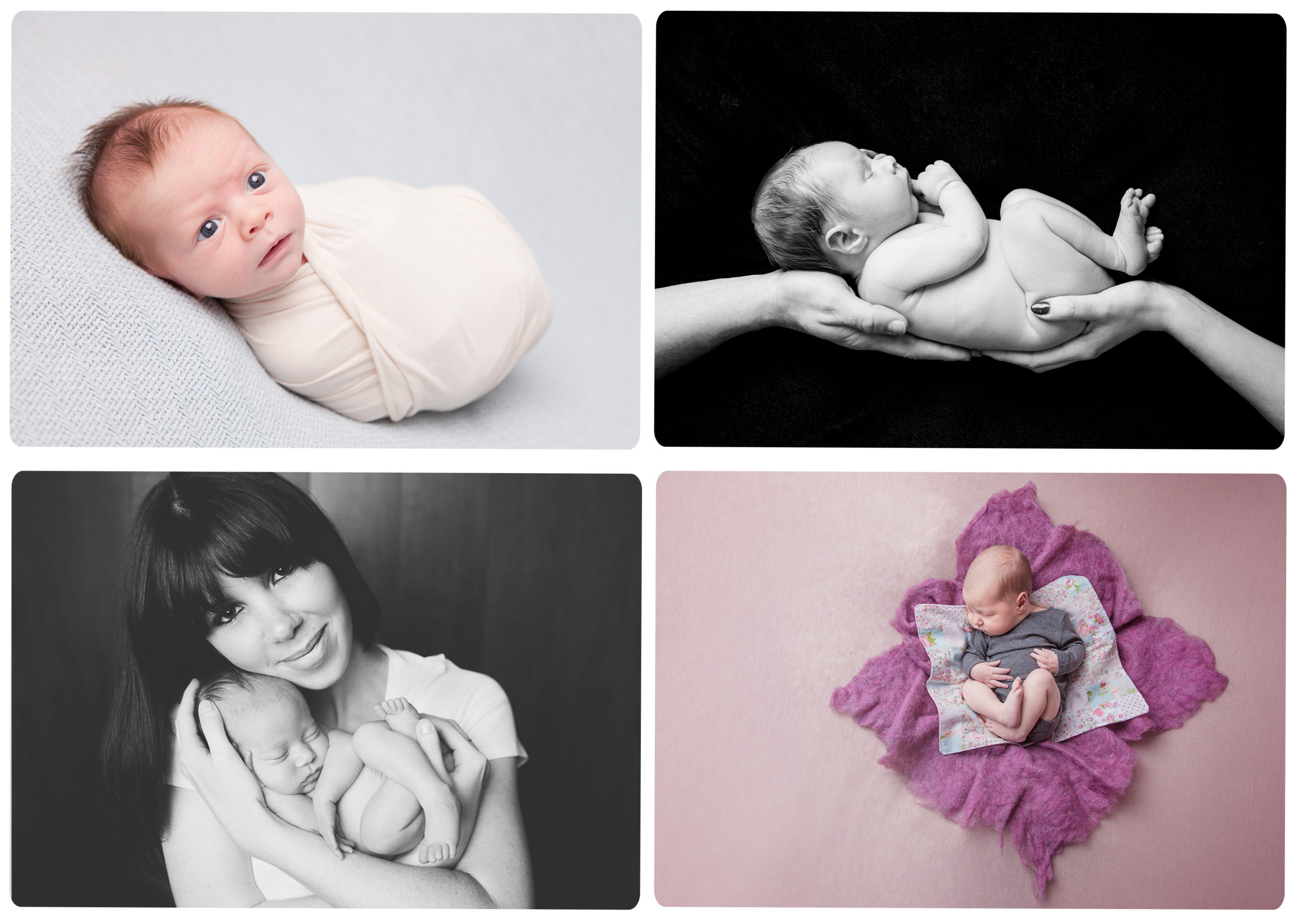 Qualified Baby Photographer Celebrations