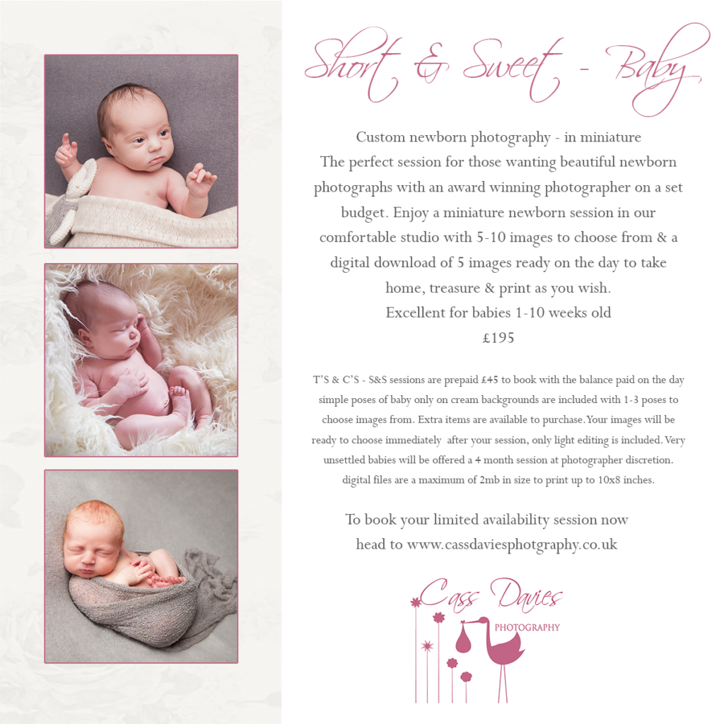 mini baby photography session north Wales
