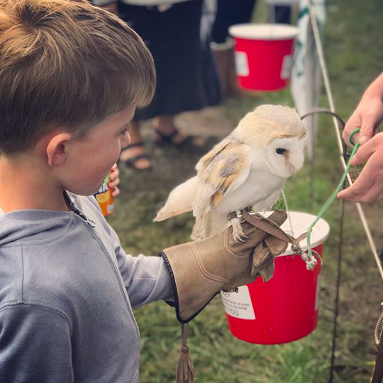 Top 5 Family Days Out – Outdoors