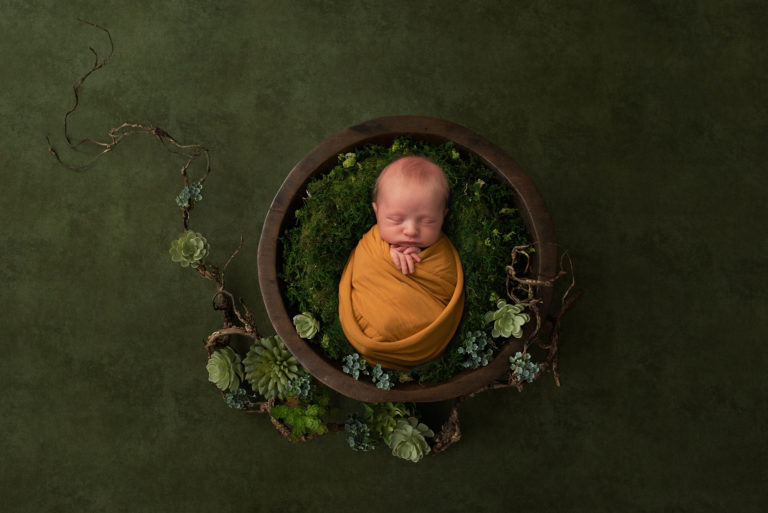newborn photographer poses baby boy swaddled in a bowl with succulents. UK newborn photography training